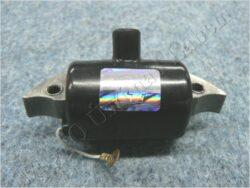 ignition coil (Terra-Vari)